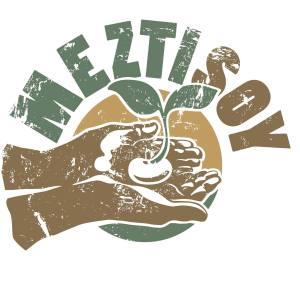 Meztisoy