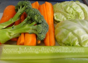 carrot-cabbage-celery-broccoli-01